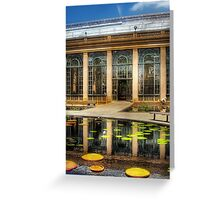 By the lily pond Greeting Card