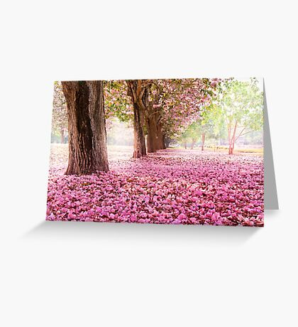 Sakura! The best! SALE! Greeting Card