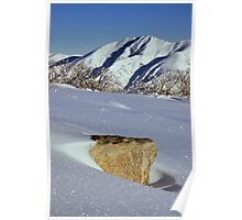 Feathertop Poster