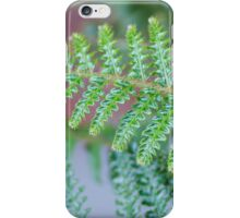 Sleepy Hollow Fern iPhone Case/Skin