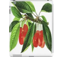 Red Cherries Vector on White Background iPad Case/Skin