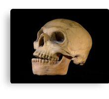 Skulls the Word Canvas Print