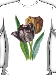 Tulip Vector on White Background T-Shirt