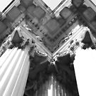 Columns by Perspective
