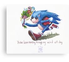 Rag doll Sonic the Hedgehog Canvas Print