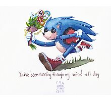 Rag doll Sonic the Hedgehog Photographic Print