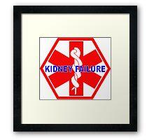 KIDNEY FAILURE MEDICAL ALERT IDENTIFICATION ID TAG  Framed Print