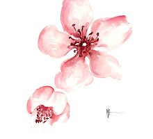 Sakura watercolor art print painting. by Joanna Szmerdt