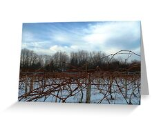 A Gentle Cool Breeze Greeting Card