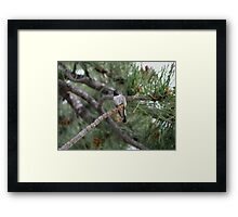 Stop and Breathe Framed Print