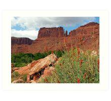 ~ Desert Beauty ~ Art Print
