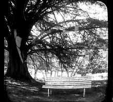 Park Bench - TTV by Kitsmumma