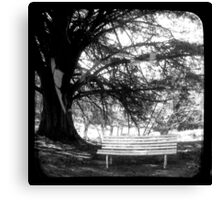 Park Bench - TTV Canvas Print