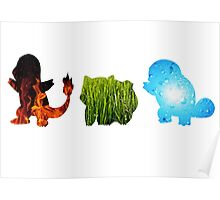 Pokemon Starters - The Elements  Poster