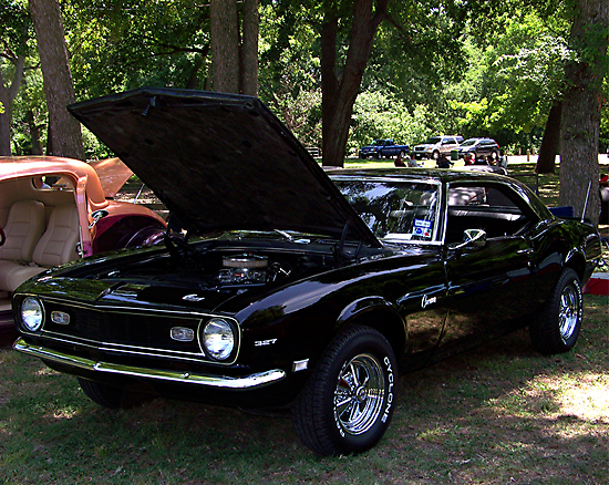 1967 Black PANTHER Camaro   by Glenna Walker