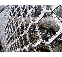 Crystal Clear: dont fence me in! Photographic Print