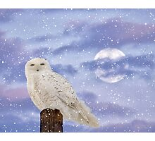 Winter Solstice Photographic Print