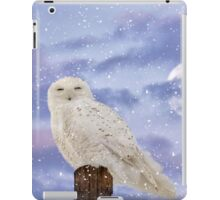 Winter Solstice iPad Case/Skin