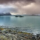 Coastal Beauty - Lofoten Islands by Andreas Stridsberg