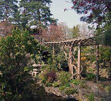 Irish Japenes Gardens by John Quinn