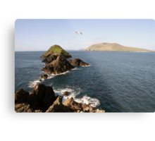 Dingle sea view Metal Print