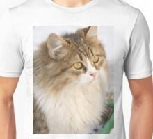 Winter Cat 4 Unisex T-Shirt