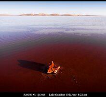 Lake Gairdner-13Jun-8.22am by jiashu xu