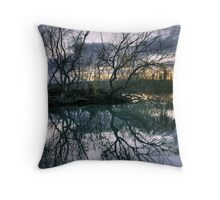 Last light. Throw Pillow