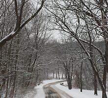 Winter Lane by katsie78