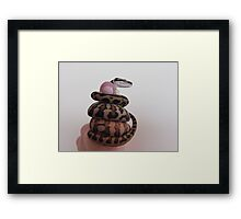 The little Darwin Python: Thumbs up Framed Print