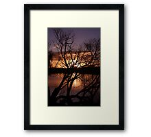 Willow twists. Framed Print