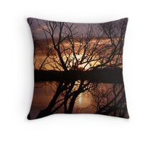Willow twists. Throw Pillow