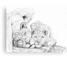 Feline love Canvas Print