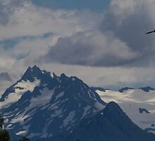 Where the Eagles Soar by Ken McElroy