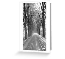 Winter road, Jizera mountains, Czech Republic Greeting Card