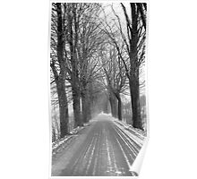 Winter road, Jizera mountains, Czech Republic Poster