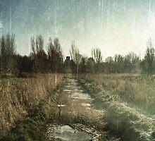 Lonely Path by AllyNCoxon