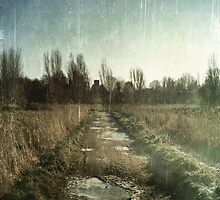 Lonely Path by AllyNCoxon