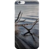 Fishing Lure iPhone Case/Skin