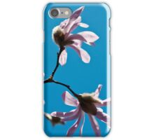 Pink Magnolia on a blue sky iPhone Case/Skin
