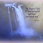 Snoqualmie Falls by Charmiene Maxwell-batten