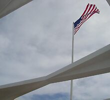USS Arizona Memorial by Tom  Garrason