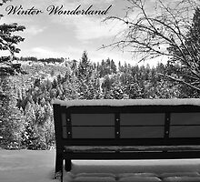 Winter Wonderland by Tina Renaud