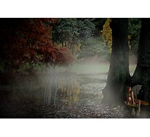 Enchanted Photographic Print