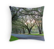 Tree Lined Street In Wilmington, NC Throw Pillow