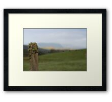 Fence post at Ashgrove Cheese In Tasmania Framed Print
