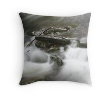 River in Liffey National Park reserve Tasmania Throw Pillow