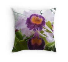 One of the prettiest orchids..... Throw Pillow