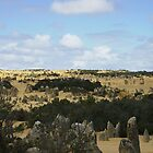 The Pinnacles - Austraila by mikequigley