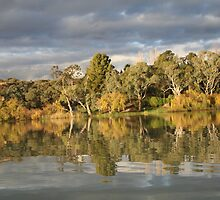 Renmark river reflections 3 by elphonline